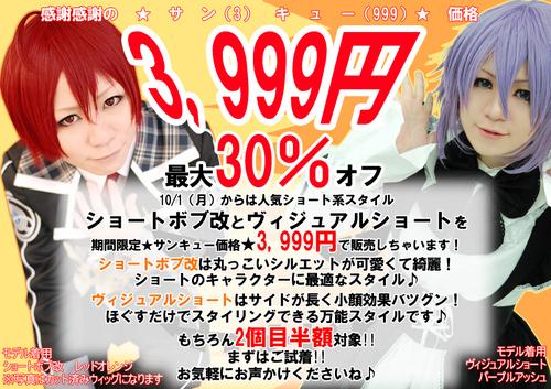 blog用3999円A4のコピー.jpg
